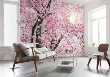 Non-woven Pink tree flowers wallpaper